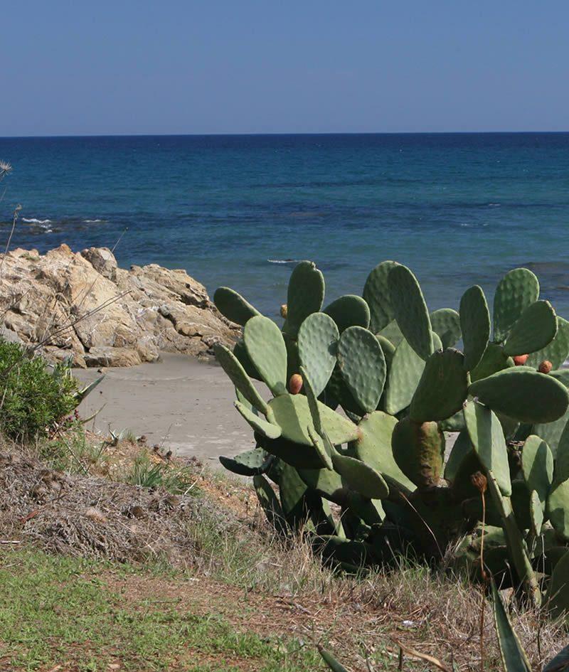 santelmo-holiday-residence-costarei-box-territorio-porto-corallo-3